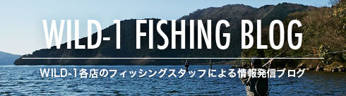 WILD-1 FISHING BLOG